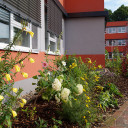 Beetgestaltung auf dem Schulhof der Grundschule SteinMalEins.