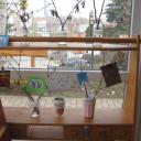 Gartenprojekt 5