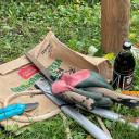 Garteneinsatz Schwabenhaus 2021 (2)