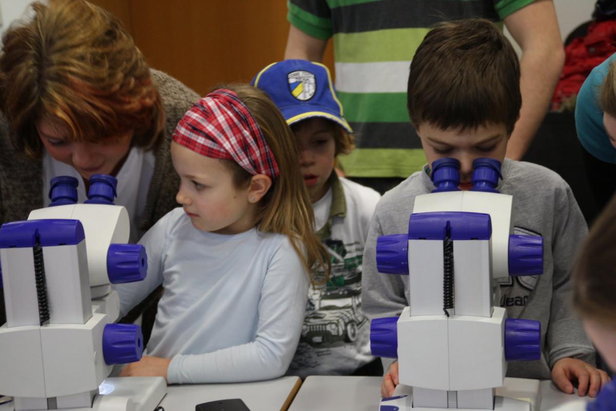 Klasse experimentiert mit dem mikroskop grundschule salzdahlum